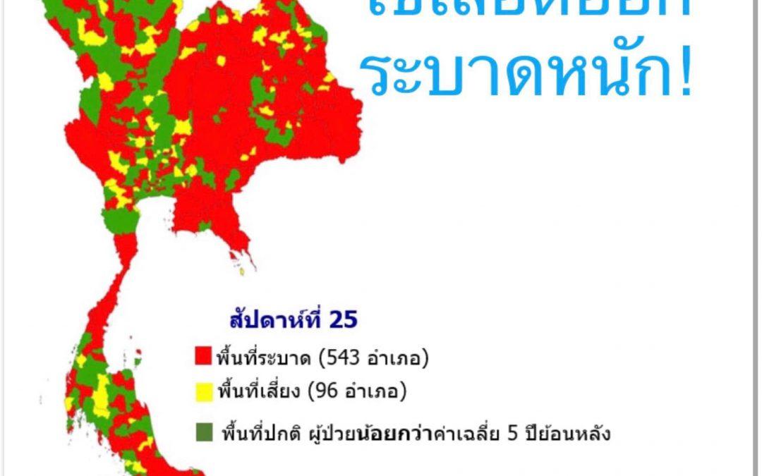 โรคไข้เลือดออก (dengue hemorrhagic fever)