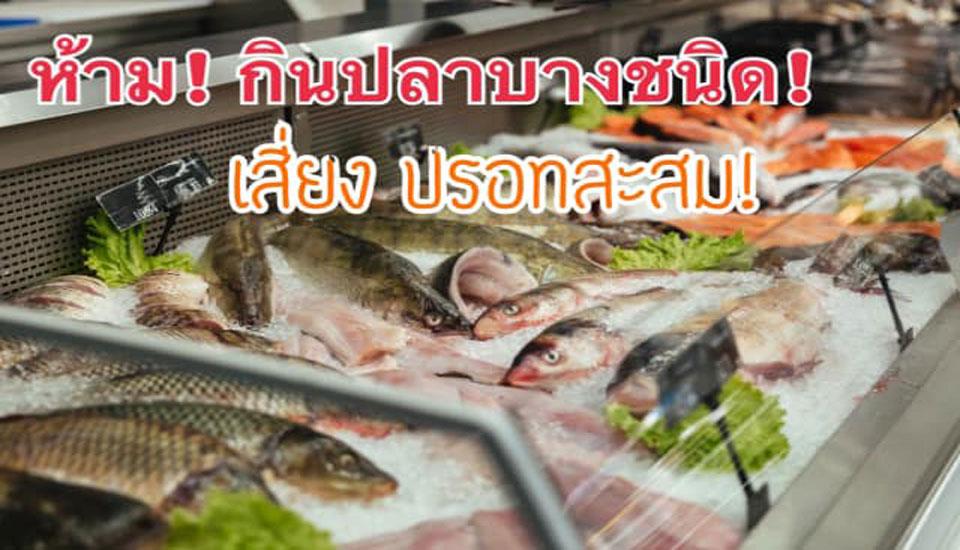 ‼️ห้าม กินปลาบางชนิด สี่ยงปรอทสะสม